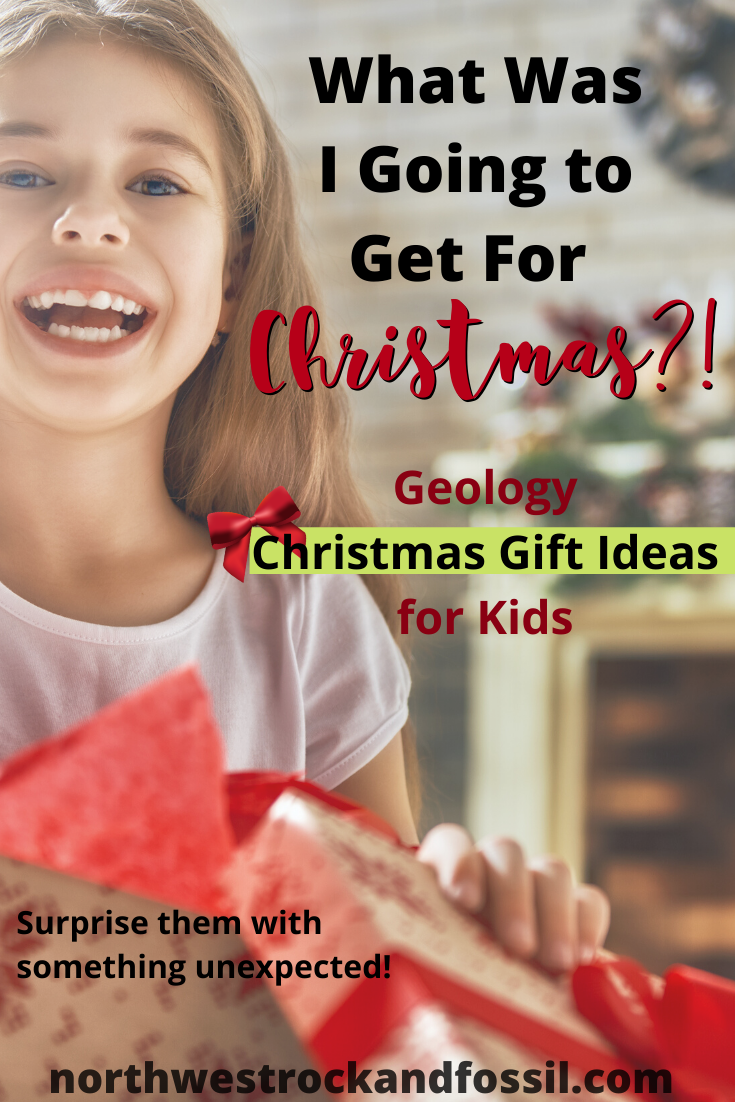 What Was I Going to Get for Christmas, Christmas gift ideas, homeschooling, geology, geology for kids, rocks